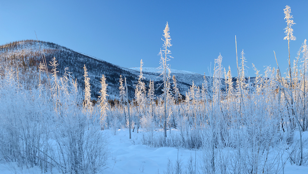 Winter landscape along Chena Hot Springs road,Fairbanks,Alaska,USA