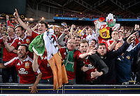 6 July 2013; British & Irish Lions supporters celebrate victory over Australia. British & Irish Lions Tour 2013, 3rd Test, Australia v British & Irish Lions. ANZ Stadium, Sydney Olympic Park, Sydney, Australia. Picture credit: Stephen McCarthy / SPORTSFILE