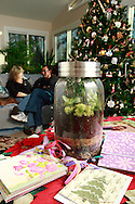 Patty and Jerry Woodbury, with a terrarium, surrounded by other things they made in an art class, photographed at their home in Kettering, Saturday, December 22, 2012.