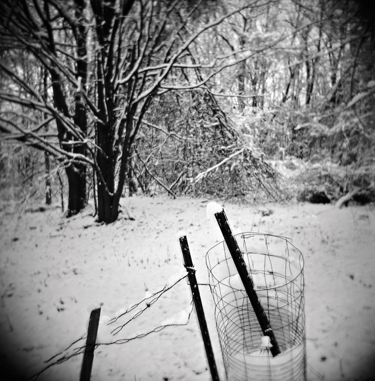 Roll of fence wire in snowy woods, Chatham, NY, USA