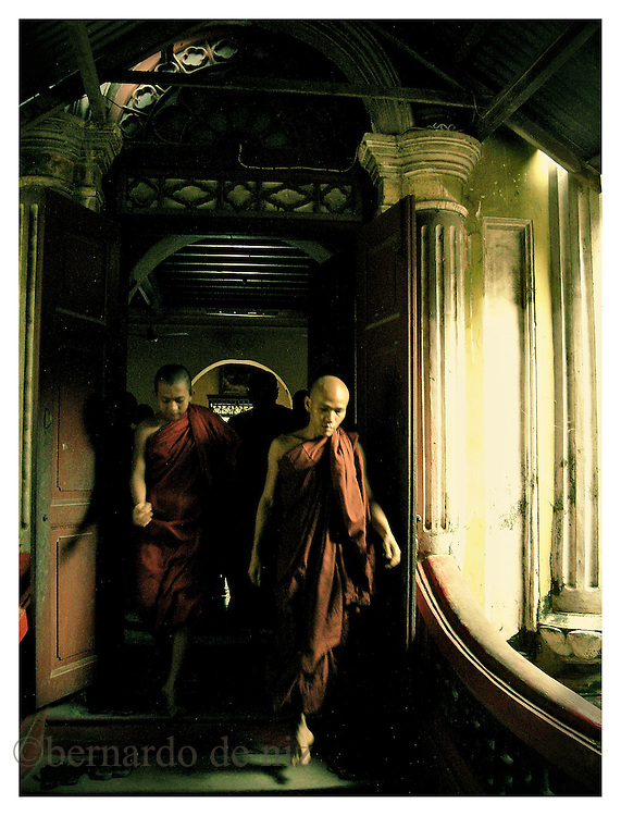 Young monks stroll inside of one of the monasteries of Burma where they are hiding. Many monks in their twenties are now the target of the persecution and repression of the military dictatorship in Burma. Monday October 8, 2007. Delta Region, Myanmar (Burma)