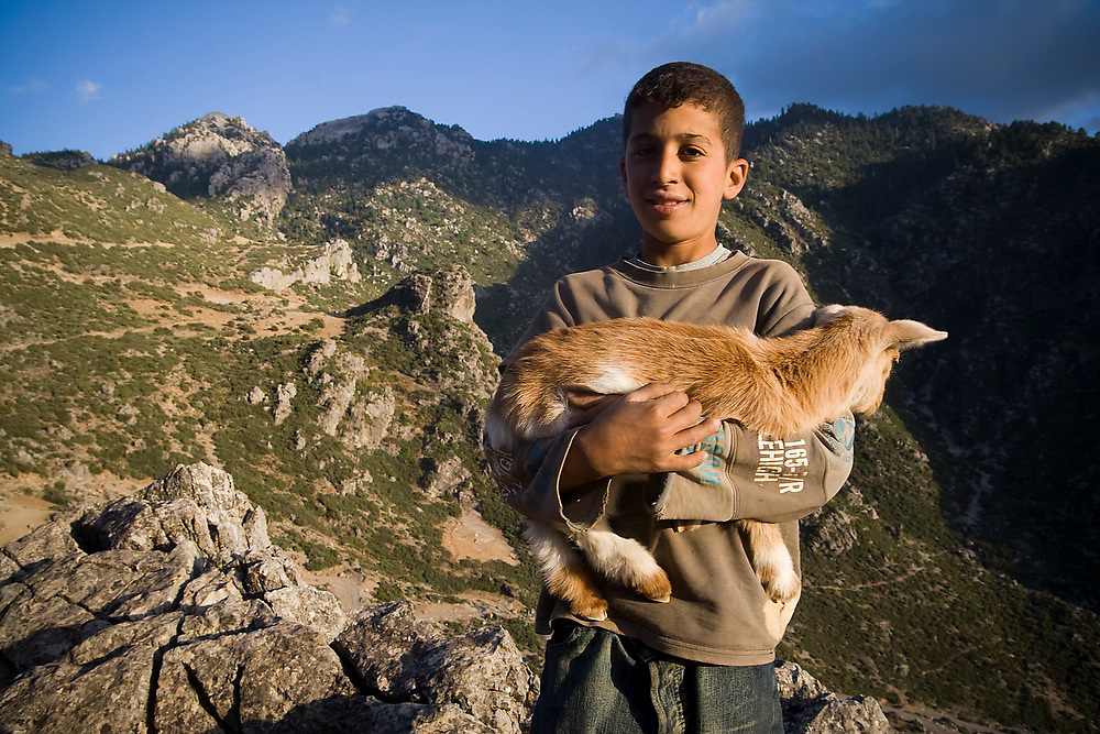 A boy goat herder holds up a kid goat in Talassemtane National Park, in the Rif Mountains, just outside the city of Chefchaouen, Morocco.