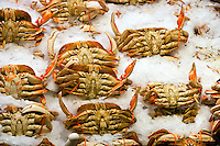 Crabs on display at fish market