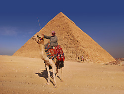 Bedouin and camel in front of the Great Pyramid at Giza