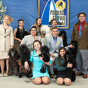 Poodle Club of America 04/18/2018