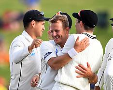 Hamilton-Cricket, New Zealand v Pakistan, day2