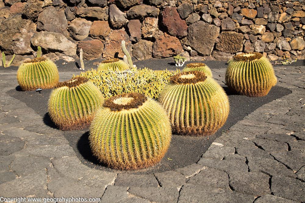Jardin de Cactus designed by César Manrique, Guatiza, Lanzarote, Canary Islands, Spain