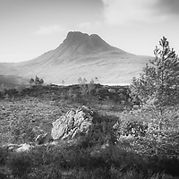 New growth on the slopes overlooking the iconic Stac Pollaidh