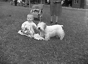 04/08/1952 <br /> 08/04/1952<br /> 04 August 1952  <br /> Dog Show, 18th Annual Green Stan Championship at Monkstown, Co. Dublin. Baby Elenor  Crummie, The Square, Rathfriland, Co. Down with Miss E. Crummies &quot;Grey Buttons&quot; B. Breed and Green Star winner.