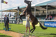 LRBHT 2016 Wednesday