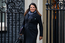 © Licensed to London News Pictures. 29/01/2019. London, UK. Minister of State for Immigration Caroline Nokes leaves 10 Downing Street after attending a Cabinet meeting this morning. Photo credit : Tom Nicholson/LNP
