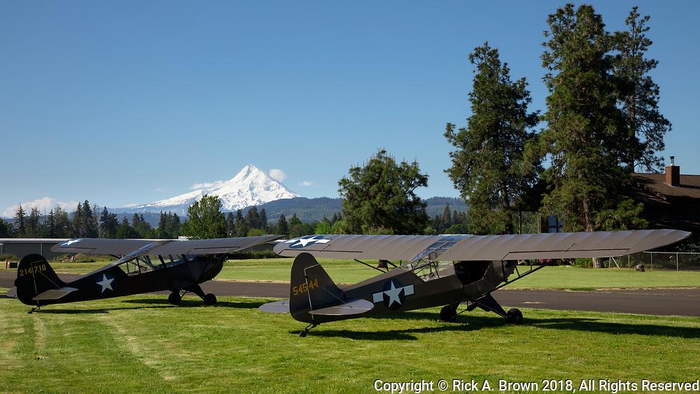 Piper L-4 and Aeronca L-3 at WAAAM.
