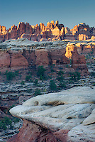 Needles District at dawn from Elephant Hill, Canyonlands National Park Utah USA