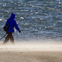 A Fisherman walks along a sand blown beach as he targets migrating Striped Bass and Bluefish migrating south for the winter.