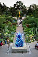 Chihuly Dis-allowed