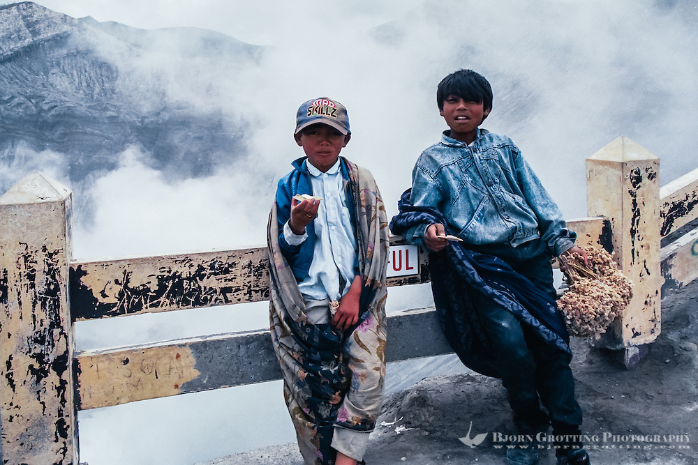 Java, East Java, Mount Bromo. Java, Bromo Tengger. Two local boys selling dried flowers at the Bromo crater rim. Anaphalis javanica or Javanese Edelweiss is now probably extinct in this area.