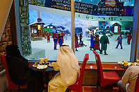 Emirats Arabes Unis, Dubai, Centre commercial Mall of the Emirates, Ski Dubai // United Arab Emirates, Dubai, Mall of the Emirates commercial center, Ski Dubai