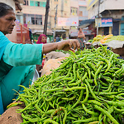 Selling chili peppers at Udaipur street market