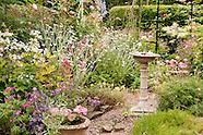 Garden Portfolio