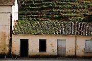 Muniz Freire_ES, Brasil...Casa em Muniz de Freire, a cidade faz parte da Rota Imperial...A house in Muniz de Freire, this city is part of the Imperial Route...Foto: LEO DRUMOND / NITRO
