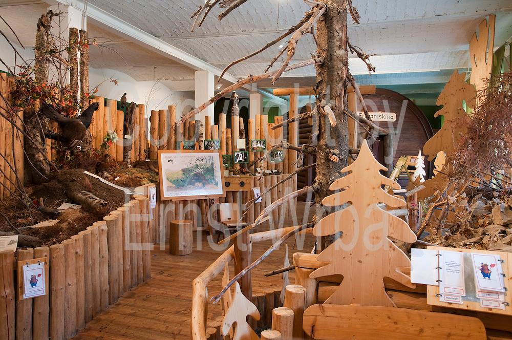 Ausstellung im Nationalparkhaus Sankt Andreasberg, Harz, Niedersachsen, Deutschland | exhibition in National Park house in Sankt Andreasberg, Harz, Lower Saxony, Lower Saxony, Germany