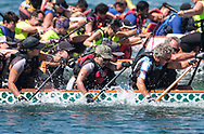 新华社照片,洛杉矶,2017年7月31日<br />     (国际)(12)第二十一届加州长滩龙舟节<br />     7月30日,参赛选手奋力划桨。<br />     在美国洛杉矶长滩市海滨体育场举行的第二十一届年度长滩龙舟节,吸引百余队上千选手参赛。长滩龙舟节是加州最大的龙舟比赛,同时也展示了中国古代龙舟赛的运动。<br />     新华社发(赵汉荣摄)<br /> Dragon Boat racers compete during a 500-meter race at the 21st Annual Long Beach Dragon Boat Festival at Marine Stadium in Long Beach, California, the United States, on July 30, 2017. The Long Beach Dragon Boat Festival is held every year in July at Marine Stadium to hosting the largest dragon boat competitions in California. It showcases the ancient Chinese sport of dragon boat racing. (Xinhua/Zhao Hanrong)(Photo by Ringo Chiu)<br /> <br /> Usage Notes: This content is intended for editorial use only. For other uses, additional clearances may be required.