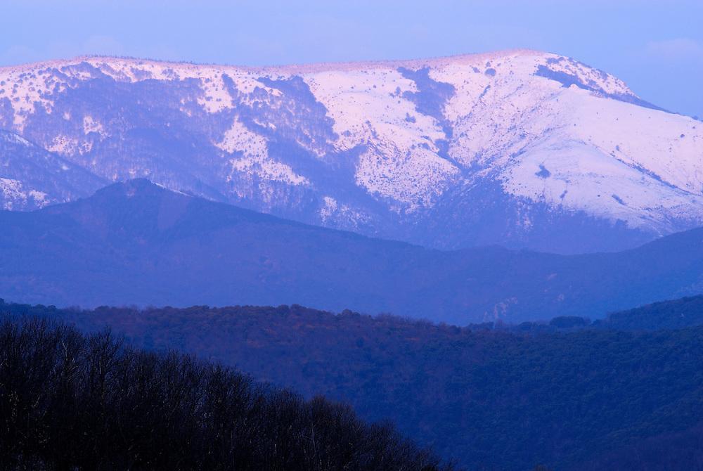 France, Languedoc Roussillon, Gard, Cévennes, Massif de l'Aigoual, montagne du Lingas