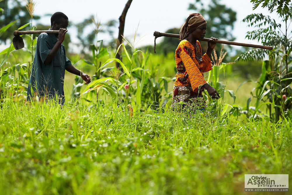 Sweet potato farmer Mwanaidi Ramadhani and fellow farmers walk through a field as they head to a farm run by a local farmer's group in the village of Mwazonge, roughly 30km southwest of Mwanza, Tanzania on Sunday December 13, 2009.