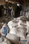 Workers stacking rice bags in warehouse in Asutsuare, Ghana.