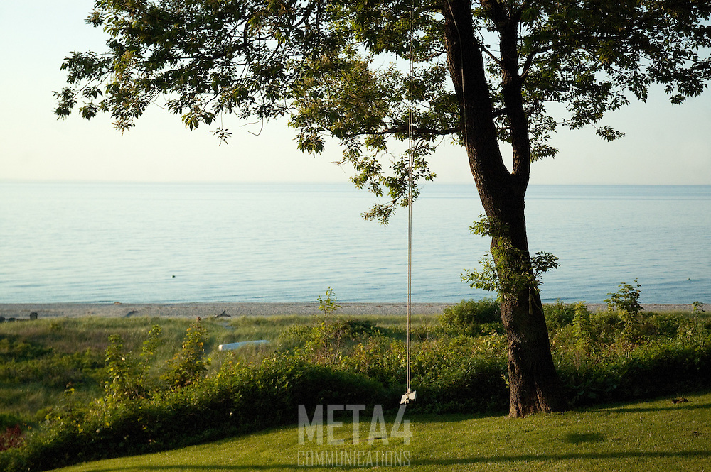 View overlooking Long Island Sound bluff and shoreline. A swing hangs from a large oak tree in foreground.