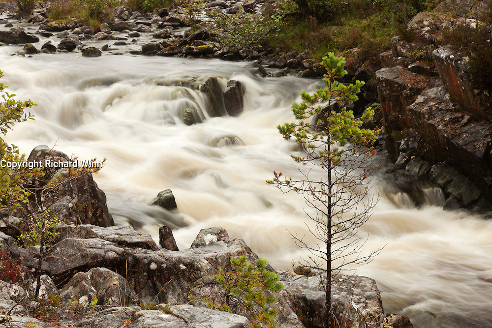 Section of rapids on the River Farrar, shortly before the confluence with the River Beauly, near Cannich.