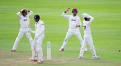 The Somerset team react to a chance.  - Mandatory by-line: Alex Davidson/JMP - 04/08/2016 - CRICKET - The Cooper Associates County Ground - Taunton, United Kingdom - Somerset v Durham - County Championship