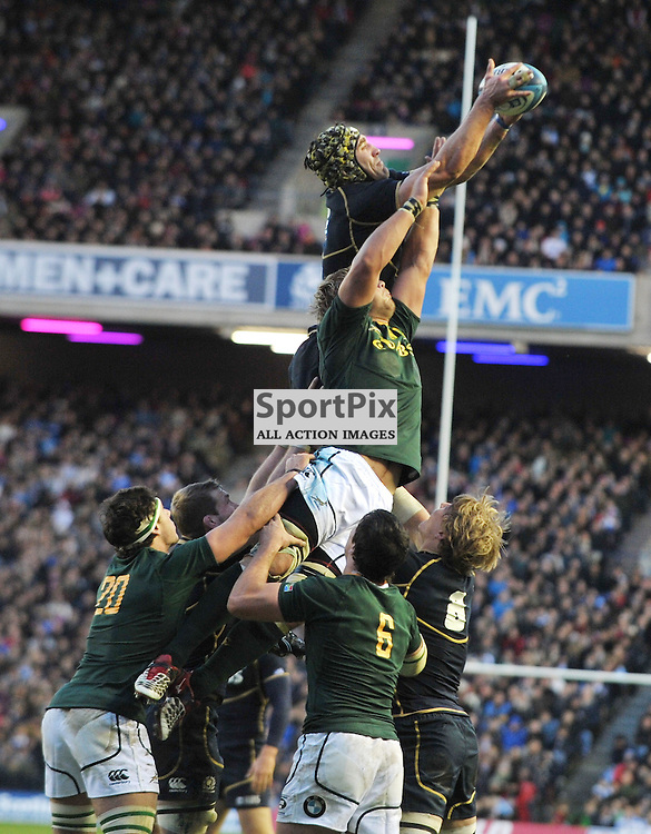 Scotland's Kelly Brown wins a line-out..Scotland v South Africa, Murrayfield Stadium, Saturday 17th November 2012..Alex Todd | Stockpix.eu