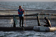 Members of Scottish Salmon Watch pictured at a salmon farm on the west coast of Scotland.<br /> <br /> Photograph © Colin McPherson, 2019 all rights reserved