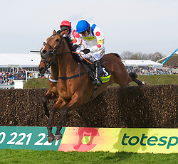 LIVERPOOL, ENGLAND - Thursday, April 8, 2010: Manchester United's manager Alex Ferguson's horse What A Friend ridden by Ruby Walsh jumps the last fence to win the Totesport Bowl Steeple Chase during the opening day of the Grand National Festival at Aintree Racecourse. (Pic by David Rawcliffe/Propaganda)