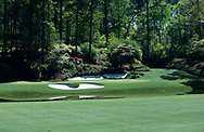 950406/AUGUSTA NATIONAL GC, Georgia USA/PHOTO MARK NEWCOMBE/THE MASTERS<br />