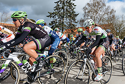 Sarah Rijkes (Lares Waowdeals) in the peloton during the early stages of the race - Women's Gent Wevelgem 2016, a 115km UCI Women's WorldTour road race from Ieper to Wevelgem, on March 27th, 2016 in Flanders, Netherlands.