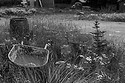 Landscape photographs of old log cabin in Boundary, AK