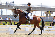 Emmelie Scholtens - Borencio<br /> Pavo Cup 2010<br /> © DigiShots