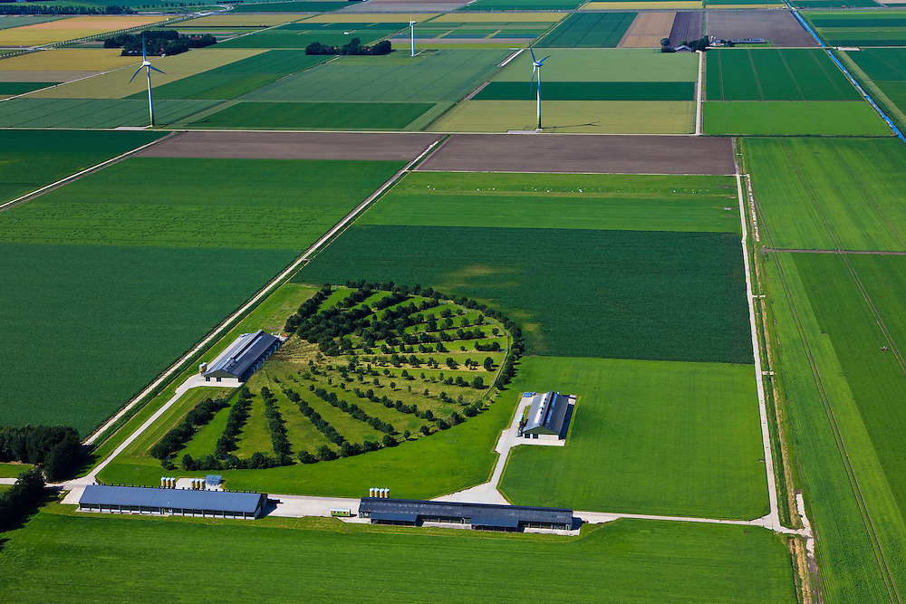 Nederland, Flevoland, Lelystad, 30-06-2011. Waiboerhove, proefbedrijf voor de melkveehouderij. Dairy Campus Universiteit Wageningen..Experimental farm for dairy farming. Dairy  Campus Wageningen University..luchtfoto (toeslag), aerial photo (additional fee required).copyright foto/photo Siebe Swart