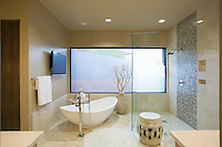 Palm Springs bathroom with freestanding bath