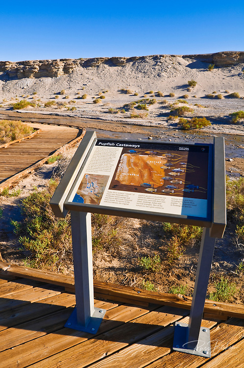 Interpretive sign and boardwalk on the Salt Creek Trail, Death Valley National Park. California