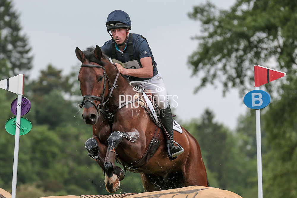 OBOS COOLEY ridden by Tim Price at Bramham International Horse Trials 2016 at  at Bramham Park, Bramham, United Kingdom on 11 June 2016. Photo by Mark P Doherty.