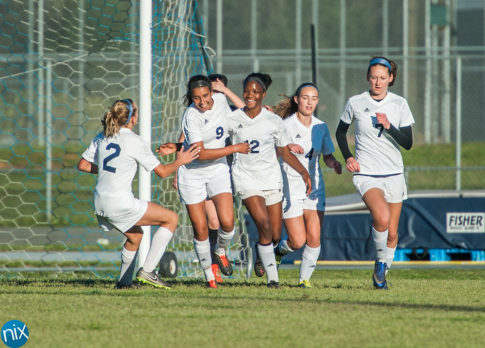 Hickory Ridge celebrates a goal against Jay M. Robinson Friday night at Hickory Ridge High School in Harrisburg. The game ended in a 2-2 draw after double overtime.
