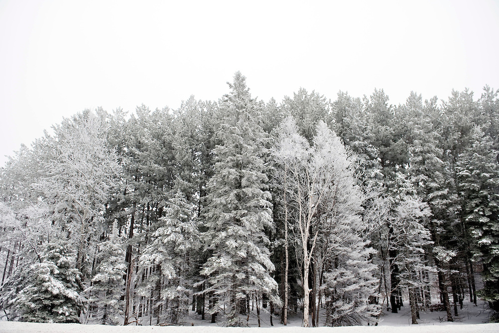 HOUGHTON, MI -DEC. 12, 2014: Winter landscape along the drive from Houghton, MI to Calumet, MI, Friday, Dec. 12, 2014. Lauren Justice for The New York Times