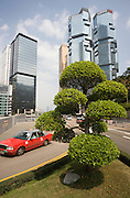 Manicured tree in the financial district by the Lippo Centre, Hong Kong, China