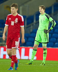 16.11.2013, Cardiff City Stadium, Cardiff, WAL, Fussball Testspiel, Wales vs Finnland, im Bild Wales' goalkeeper Wayne Hennessey looks dejected as Finland score, late equalising goal // during the international friendly match between Wales and Finland at the Cardiff City Stadium in Cardiff, Great Britain on 2013/11/17. EXPA Pictures © 2013, PhotoCredit: EXPA/ Propagandaphoto/ David Rawcliffe<br /> <br /> *****ATTENTION - OUT of ENG, GBR*****