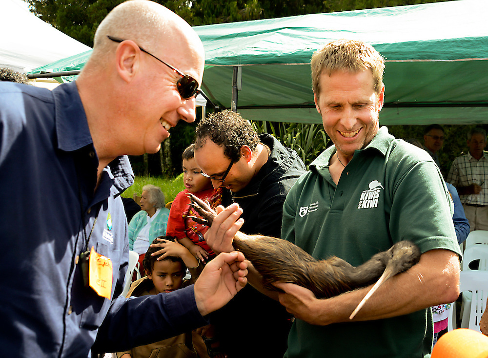 Mike Jebson, left, Chief Executive QEII National Trust, checks out one of 14  kiwi released on the 430 hectare Marunui Conservation Ltd covenant after a 50 year absence, Brynderwyn range, Northland  New Zealand. Saturday April 13, 2013. Credit:SNPA / Malcolm Pullman