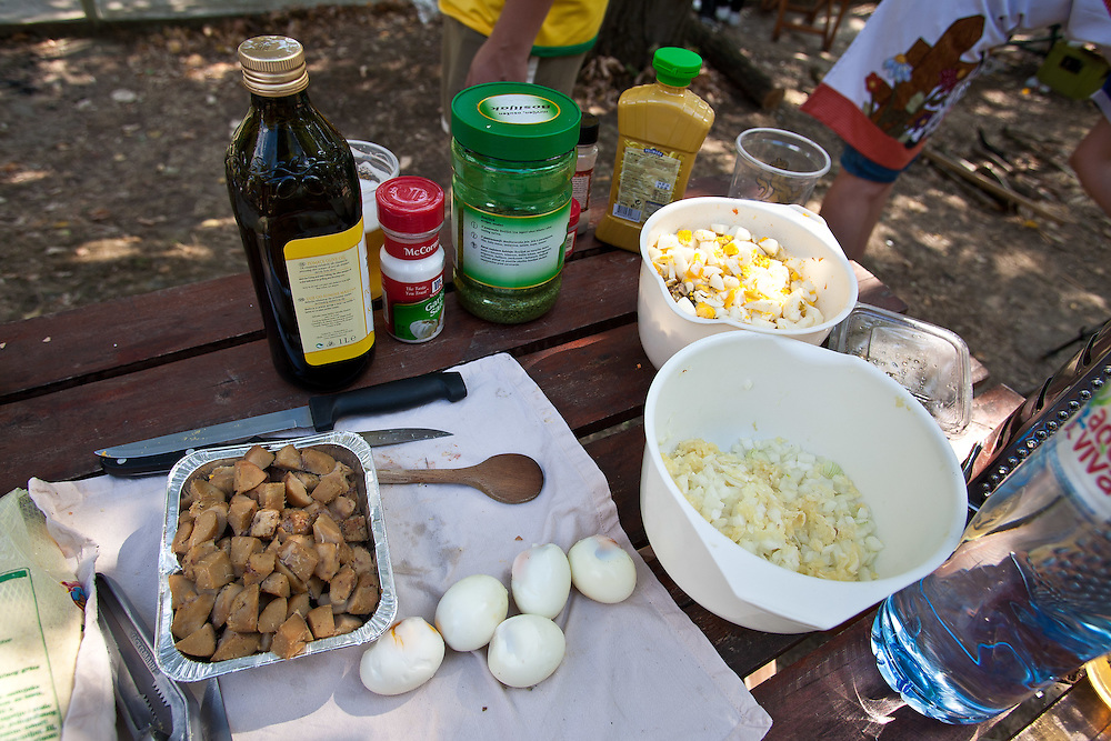 Ingredients laid out at the 2011 World Testicle Cooking Championship, Ovcar Banja, Serbia.