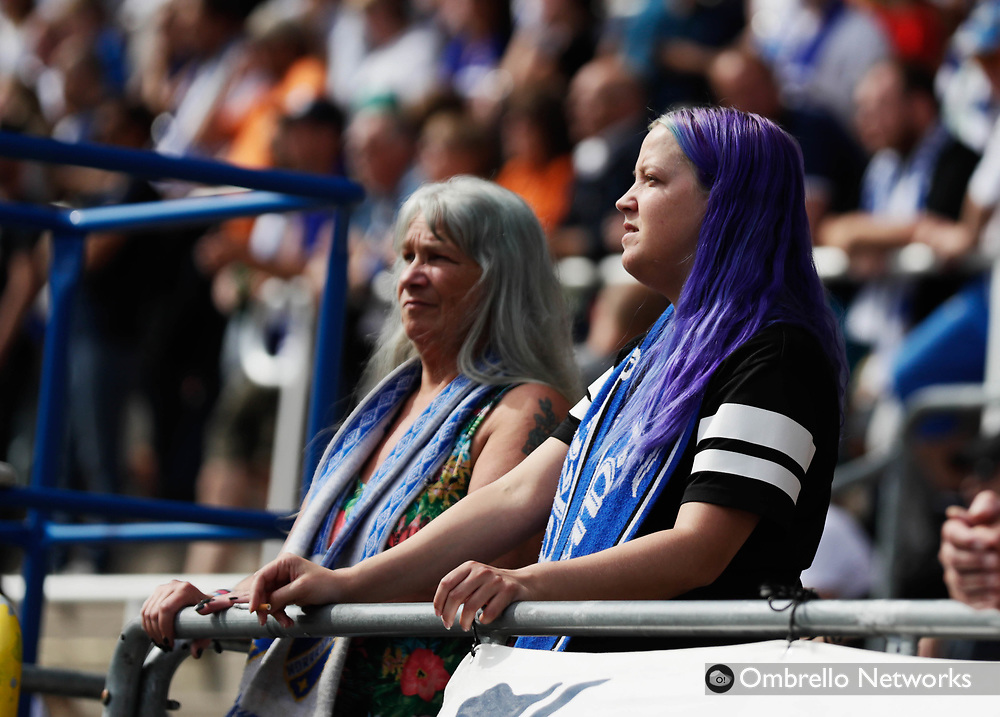 NORRKÖPING, SWEDEN - JULY 09: Fans of IFK Norrköping during the Allsvenskan match between IFK Norrköping and IF Elfsborg  at Östgötaporten on July 9, 2017 in Norrköping, Sweden. Foto: Nils Petter Nilsson/Ombrello